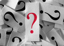 perguntas_importancia_2
