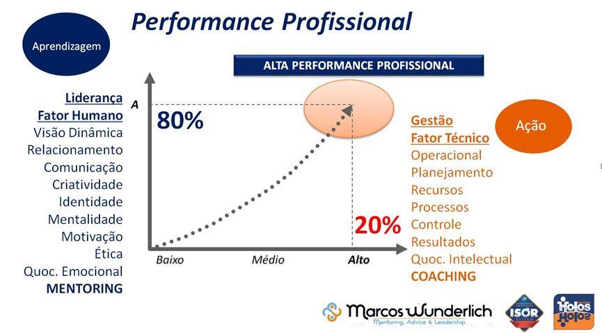 Gráfico representativo da influência do Coaching e Mentoring na Performance Profissional